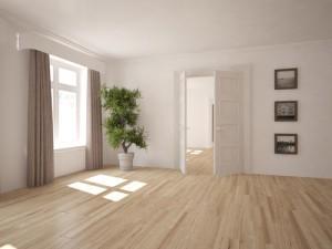 mytí dřevěných podlah